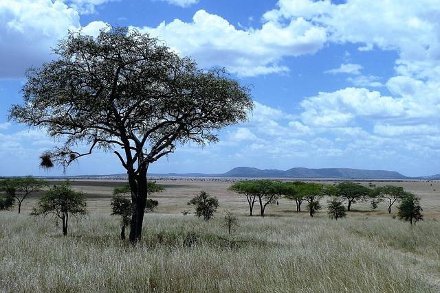 טיולי בר מצווה בטנזניה